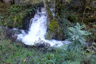 DSCF3354water