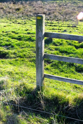 Another wired stile