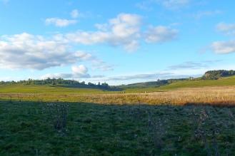 The beautiful wild paysage of Cezallier